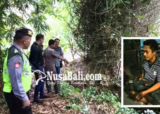 Nusabali.com - dikira-musang-tewas-ditembak-teman-sendiri