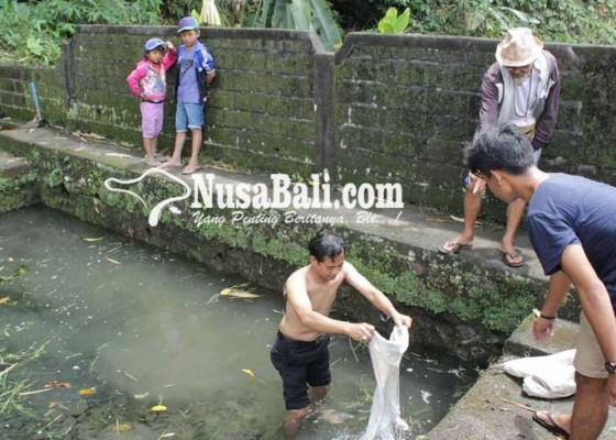 Nusabali.com - 4-pasucian-rusak-diterjang-banjir
