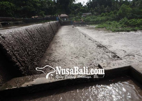 Nusabali.com - ratusan-ha-sawah-tunda-tanam