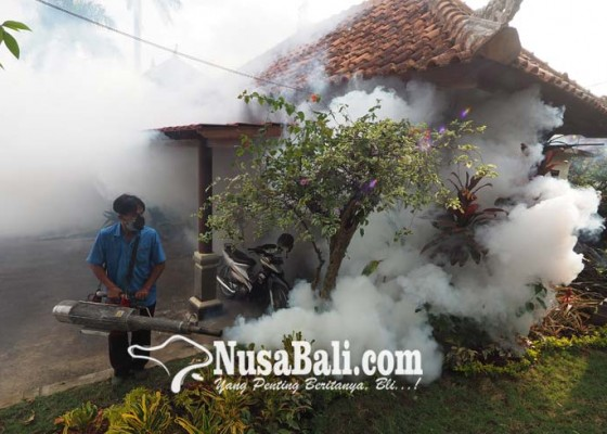 Nusabali.com - pasien-db-2017-mencapai-201-orang