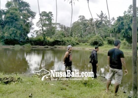 Nusabali.com - pertama-kali-terjadi-sebelumnya-air-kolam-sempat-berubah-warna