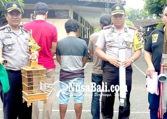 Nusabali.com - polhut-bekuk-tiga-pemburu