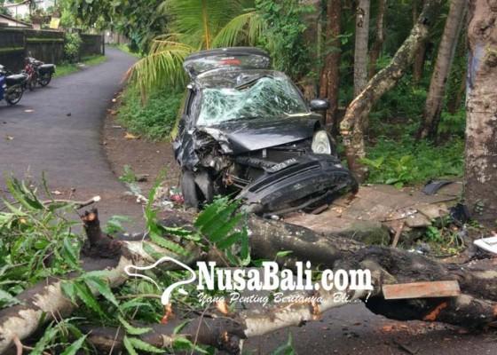 Nusabali.com - mobilnya-tabrak-pohon-anak-sekretaris-disdik-selamat