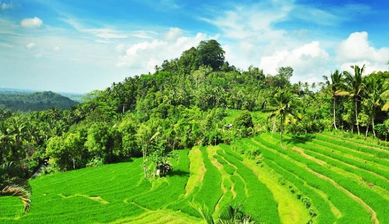 www.nusabali.com-kawasan-wisata-bukit-jambul-perlu-ditata-ulang
