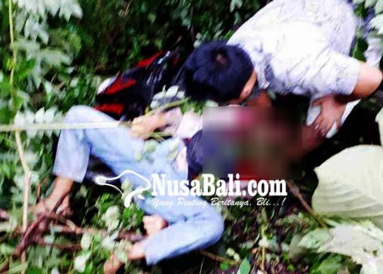 Nusabali.com - rem-blong-pemotor-tewas-terjun-ke-jurang