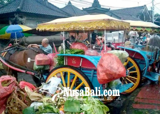 Nusabali.com - job-berkurang-kusir-dokar-pilih-kembali-angkut-barang