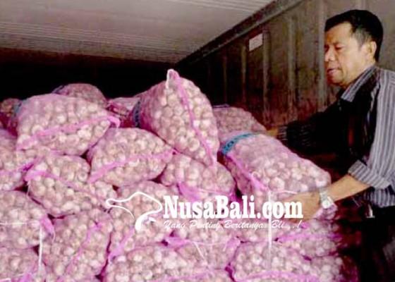 Nusabali.com - bawang-putih-terancam-langka-lagi