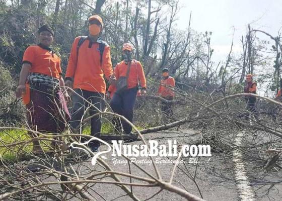 Nusabali.com - jalur-pasar-agung-tertutup-pohon-tumbang
