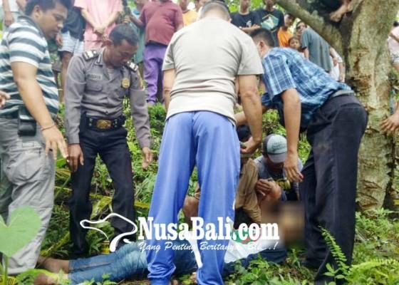 Nusabali.com - siswa-smp-gantung-diri-di-pohon-mangga