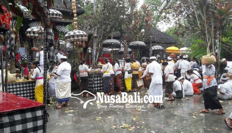 www.nusabali.com-pujawali-pura-luhur-tamba-waras