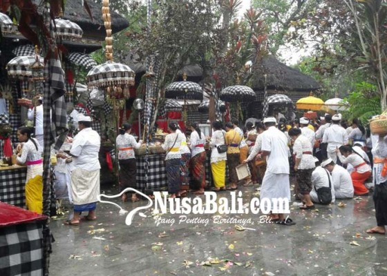 Nusabali.com - pujawali-pura-luhur-tamba-waras