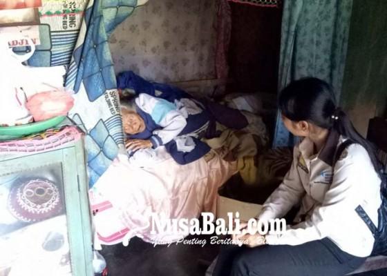 Nusabali.com - nenek-rempig-hidup-sebatang-kara-atap-bocor-air-hujan-masuk-kamar