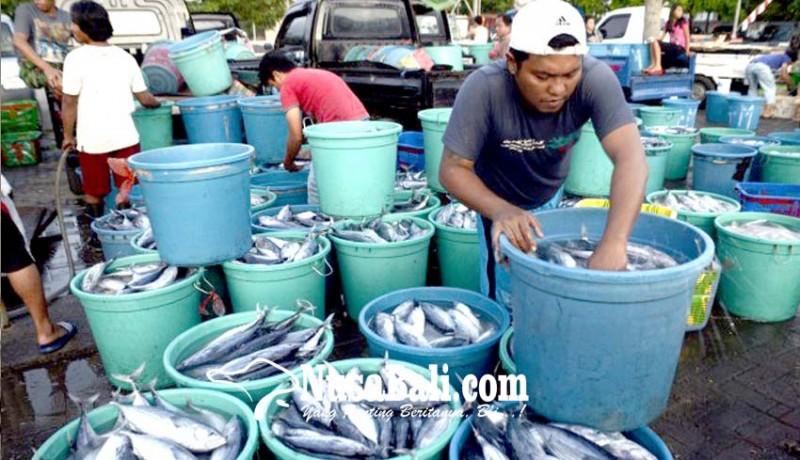 www.nusabali.com-budidaya-ikan-terhambat-kebiasaan-nelayan