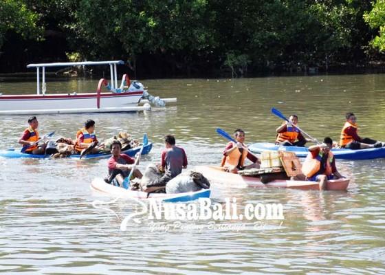 Nusabali.com - susur-mangrove-ratusan-pelajar-berlomba-pungut-sampah
