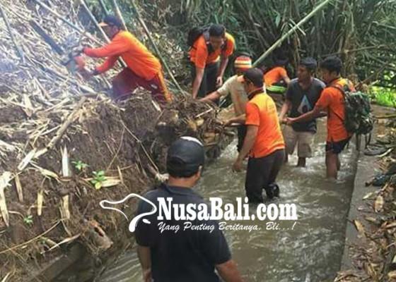 Nusabali.com - longsor-timpa-saluran-irigasi