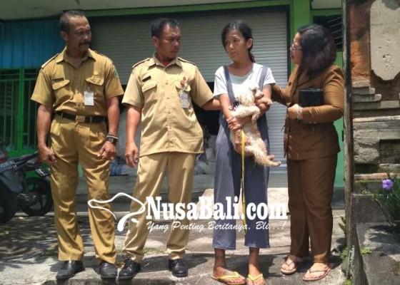 Nusabali.com - rana-furusawa-akhirnya-dibawa-ke-rsj-di-bangli