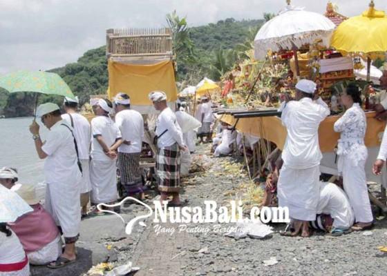 Nusabali.com - mulang-pakelem-kerbau-di-segara-buitan