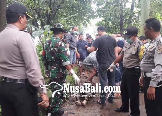 Nusabali.com - penemuan-mayat-gemparkan-desa-petandakan