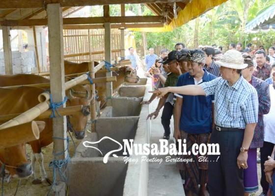 Nusabali.com - pemprov-bali-alokasikan-60-simantri-untuk-2018