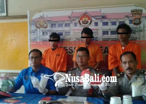 Nusabali.com - jaringan-pil-koplo-diburu-sampai-jember