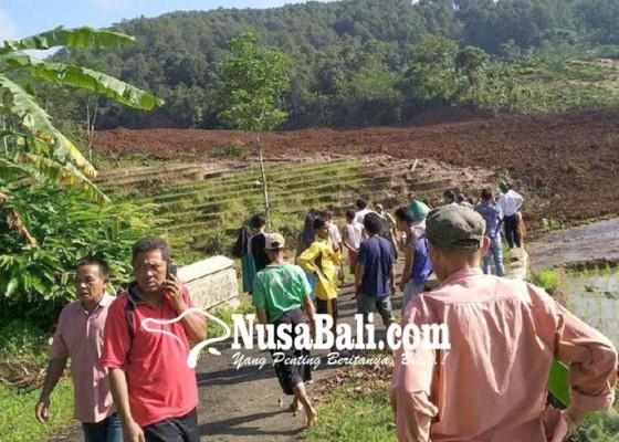 Nusabali.com - brebes-longsor-15-orang-hilang