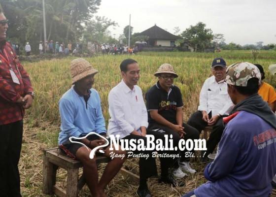 Nusabali.com - bali-daerah-pertama-tuntaskan-sertifikat-2019