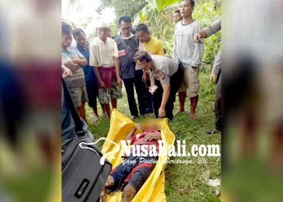 Nusabali.com - terperosok-dari-tebing-petani-tewas-mengenaskan