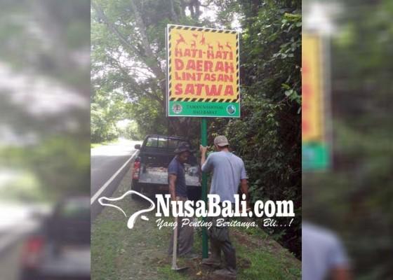 Nusabali.com - tnbb-sebar-plang-imbauan