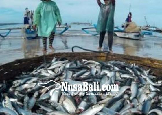 Nusabali.com - ekspor-hasil-perikanan-bali-melambung