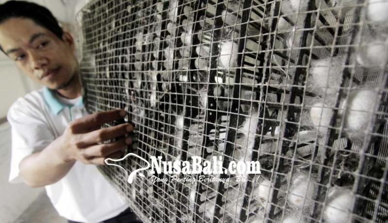 www.nusabali.com-produksi-kain-sutera