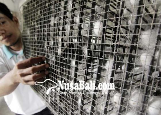 Nusabali.com - produksi-kain-sutera