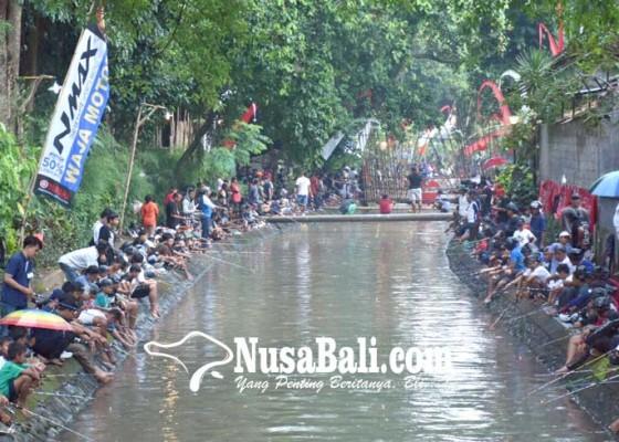 Nusabali.com - 2300-ekor-lele-diperebutkan-1000-peserta-mancing