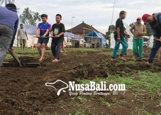 Nusabali.com - pengungsi-buat-lapangan-voli
