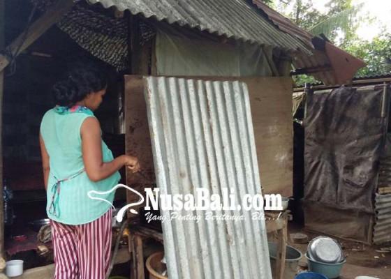 Nusabali.com - 5-orang-tidur-memasak-di-gubuk-2-meter-x-2-meter