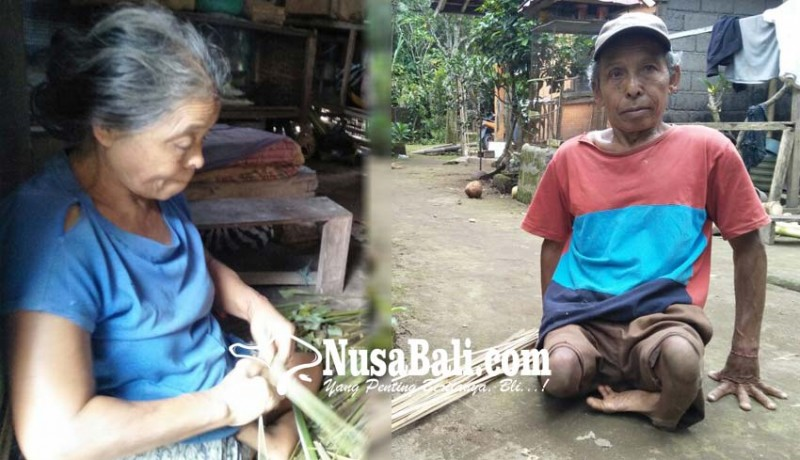 www.nusabali.com-sama-sama-tak-punya-kaki-harus-cari-duit-buat-ngaben-ibunya