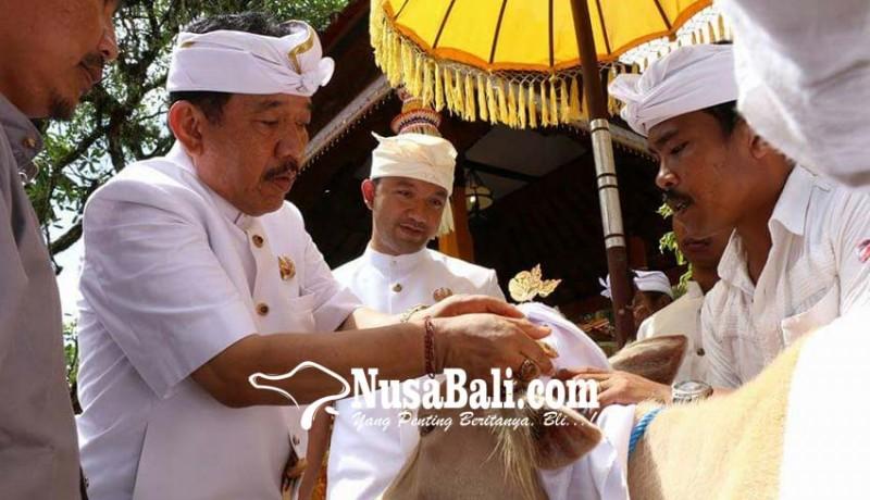 www.nusabali.com-usai-palebon-puri-ubud-gelar-maligia