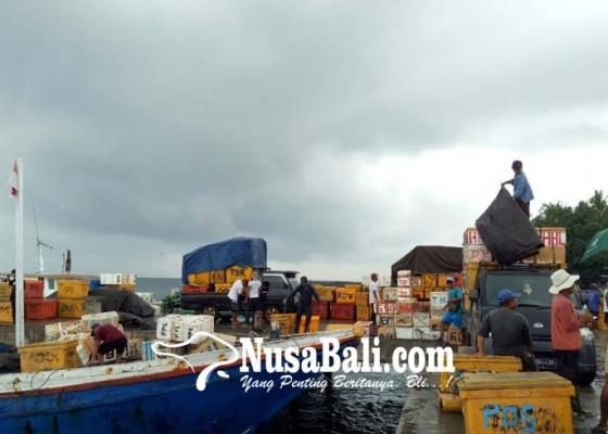 Nusabali.com - total-aset-ppi-sangsit-rp-146-miliar
