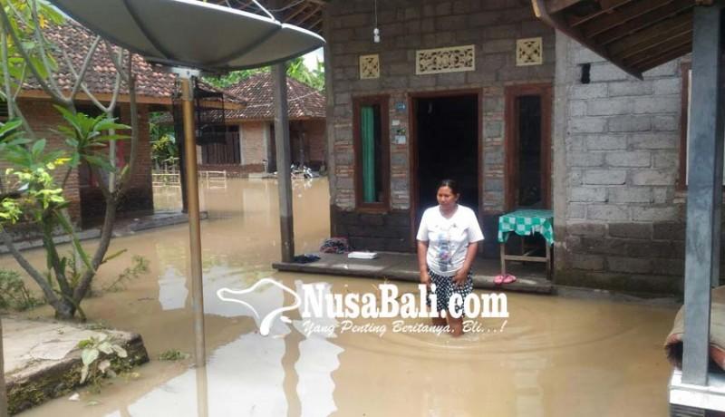 www.nusabali.com-banjir-di-desa-pengulon-75-rumah-tenggelam