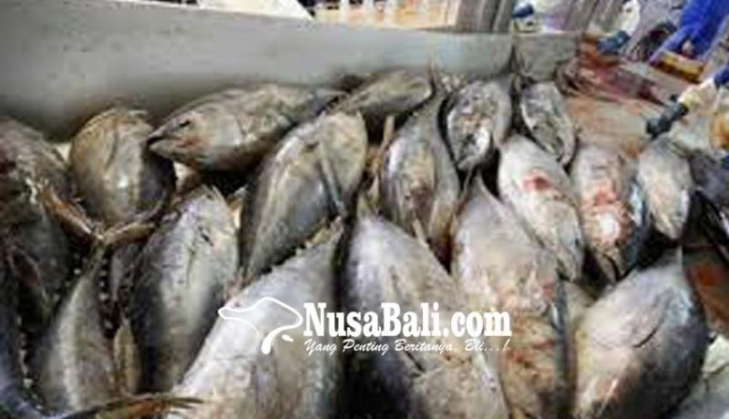 www.nusabali.com-china-terbesar-serap-ekspor-ikan-bali