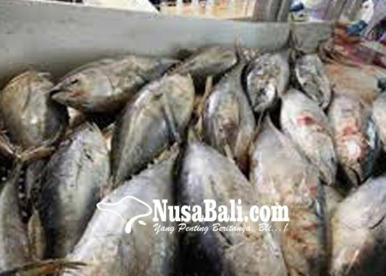 Nusabali.com - china-terbesar-serap-ekspor-ikan-bali