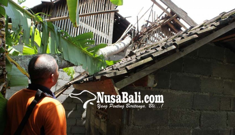 www.nusabali.com-rumah-pensiunan-tni-tertimpa-pohon