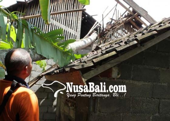 Nusabali.com - rumah-pensiunan-tni-tertimpa-pohon