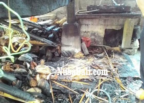 Nusabali.com - ditinggal-ngejot-dapur-ludes-terbakar