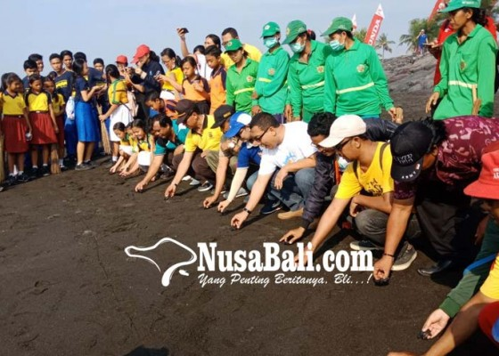 Nusabali.com - dosman-gelar-save-our-beach