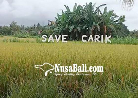Nusabali.com - save-carik-tangkal-alih-fungsi-lahan
