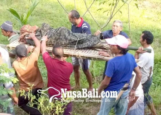 Nusabali.com - ditemukan-telungkup-di-tegalan-ternyata-pekak-santra-meninggal