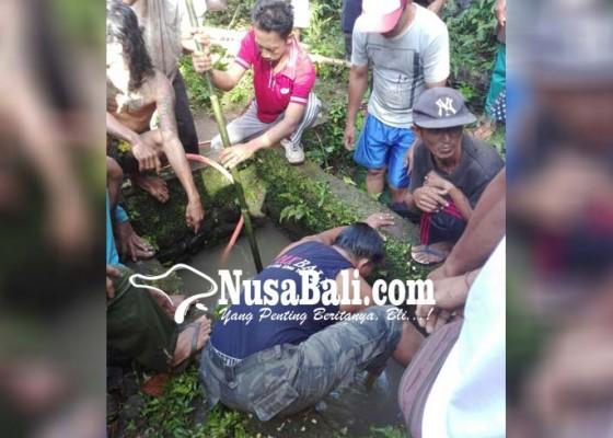 Nusabali.com - idap-gangguan-jiwa-seorang-duda-tewas-diduga-terjatuh-ke-sumur-beji