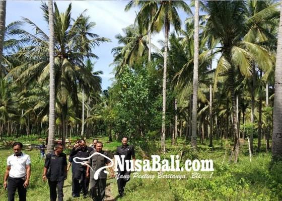 Nusabali.com - akan-jadi-lokasi-plts-dan-tambak