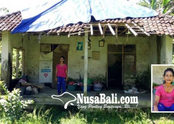 Nusabali.com - air-dan-listrik-dibantu-tetangga-kerja-serabutan-untuk-hidup