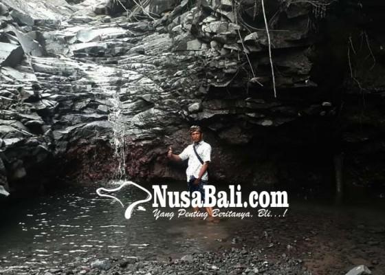 Nusabali.com - pepohonan-tersapu-banjir-muncul-kayoan-kaja